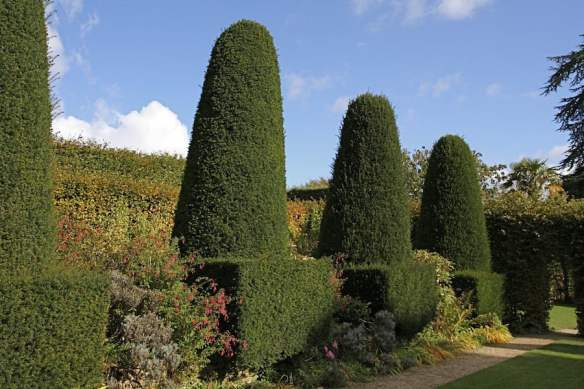 Hidcote's clipped yew topiary