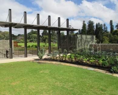 First Creek Wetland at Adelaide Botanic Garden