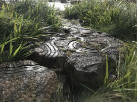 LV Landscape of the Year_Australian Ecosystems (2)