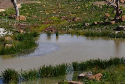 LV Landscape of the Year_Australian Ecosystems (4)