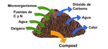 como-hacer-compost-gardeneas-proceso