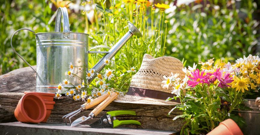 diccionario-jardineria-gardeneas-portada