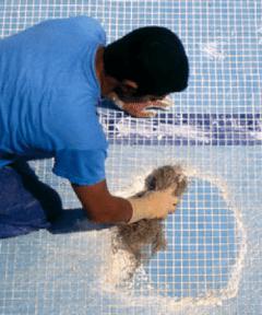 piscina-limpiador-paredes-pqs-02