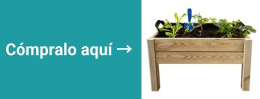 plantas-en-oficina-productividad