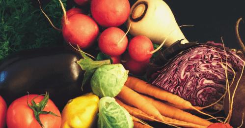 huerto-planteles-agrícola-mesas-cultivo
