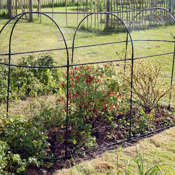 Small Vegetable Garden Ideas