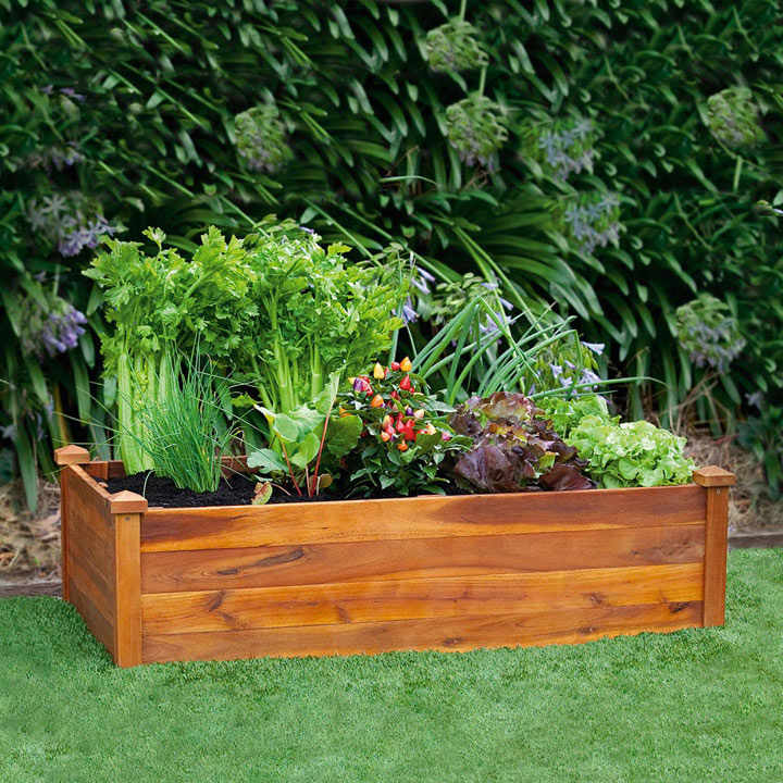 Easy Raised Vegetable Garden Plans
