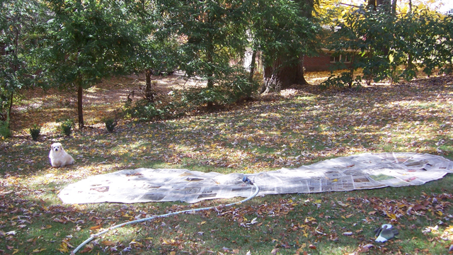 Creating a New Garden Bed (4/5)