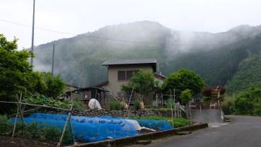 Kochi Japan Botaincal Gardens Tomitaro Makino travel (23)