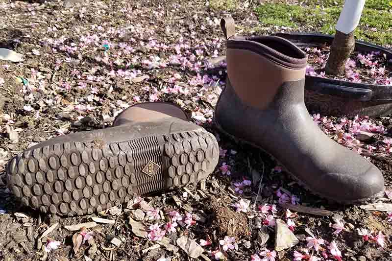 A close up of a pair of two tone brown gardening shoes, with one of them set on the side to show the tread, pictured in sunshine in the garden.