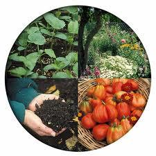 garden season - Copy