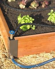 garden, irrigation, hose