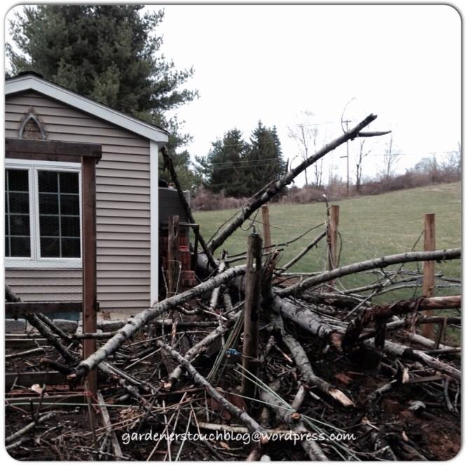 garden damage