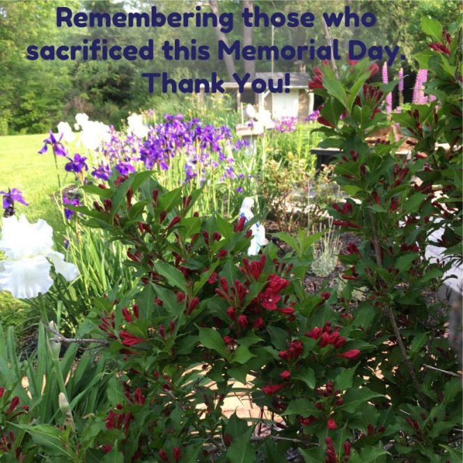 Memorial Day Garden
