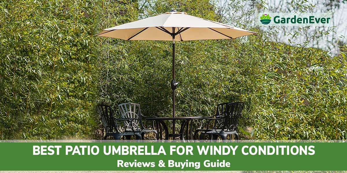 10 best patio umbrella for windy