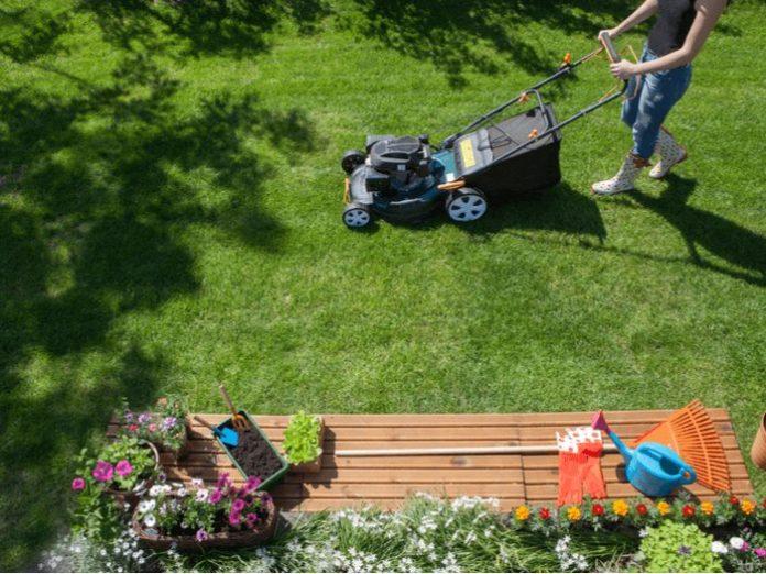 Get Your Garden In Shape