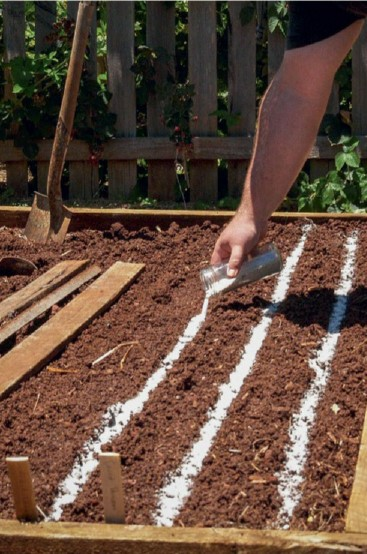 prepare beds for sowing