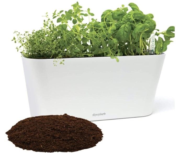 Window Garden Aquaphoric Planter