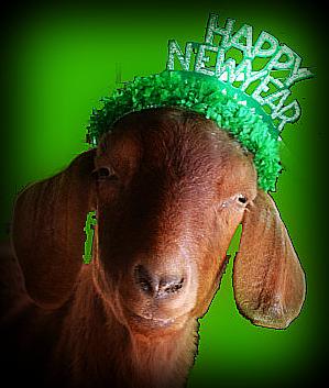 goat happy new year