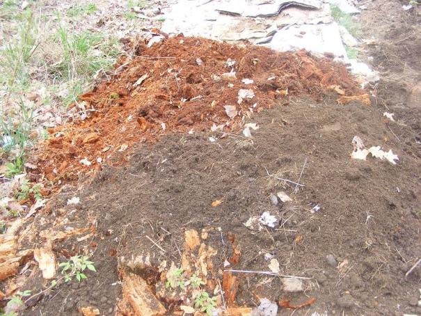 HugelKultur Bed, day 2: Rotting wood covered partially by fresh soil.