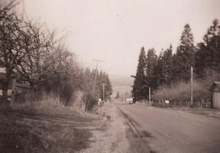 SW Oleson Road, 1948, looking north