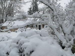 2017 snow on SW Holly Lane