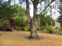 7770 SW Oleson Rd - former Krom residence