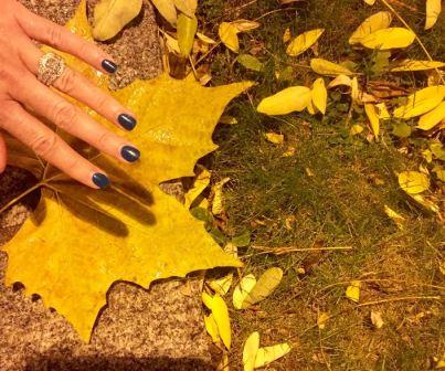 fall-leaf-huge