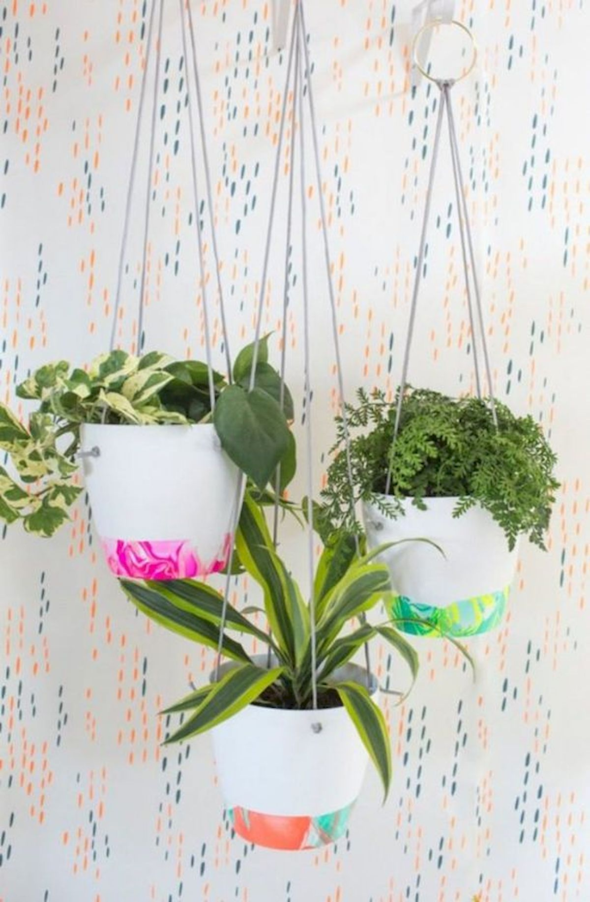 30 Adorable Indoor Hanging Plants To Decorate Your Home (2)