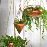 30 Adorable Indoor Hanging Plants To Decorate Your Home (22)