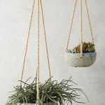 30 Adorable Indoor Hanging Plants To Decorate Your Home (28)
