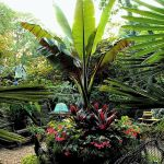 30 Amazing and Beautiful Tropical Garden Ideas (7)