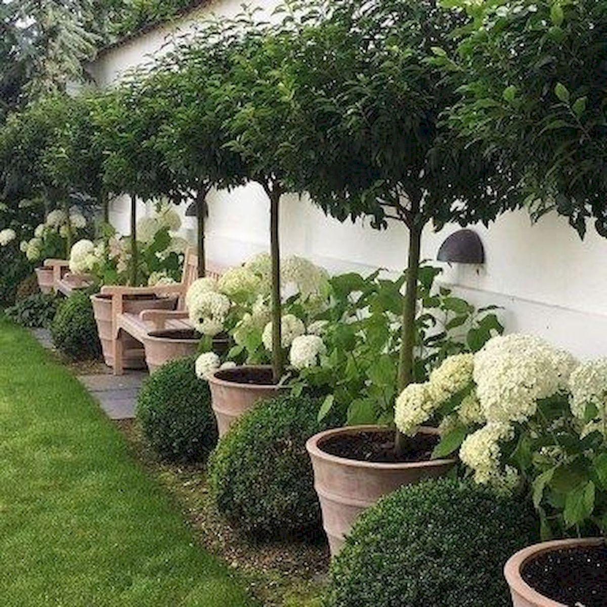 35 Stunning Backyard Garden Ideas (13)