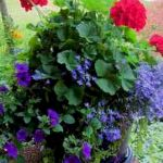 40 Beautiful Container Flower Garden Ideas (19)