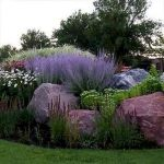 40 Beautiful Front Yard Rock Garden Landscaping Ideas (13)
