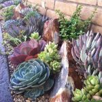 40 Beautiful Front Yard Rock Garden Landscaping Ideas (9)