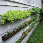 45 Interesting Vegetables Garden Ideas (19)