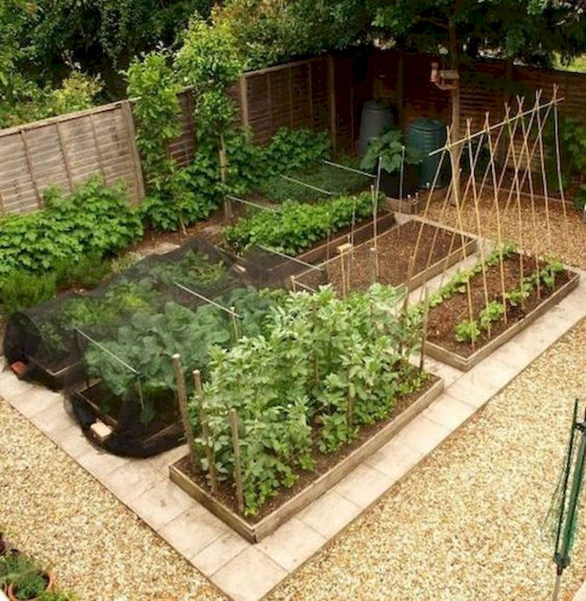 50 Inspiring Small Vegetable Garden Ideas (49)