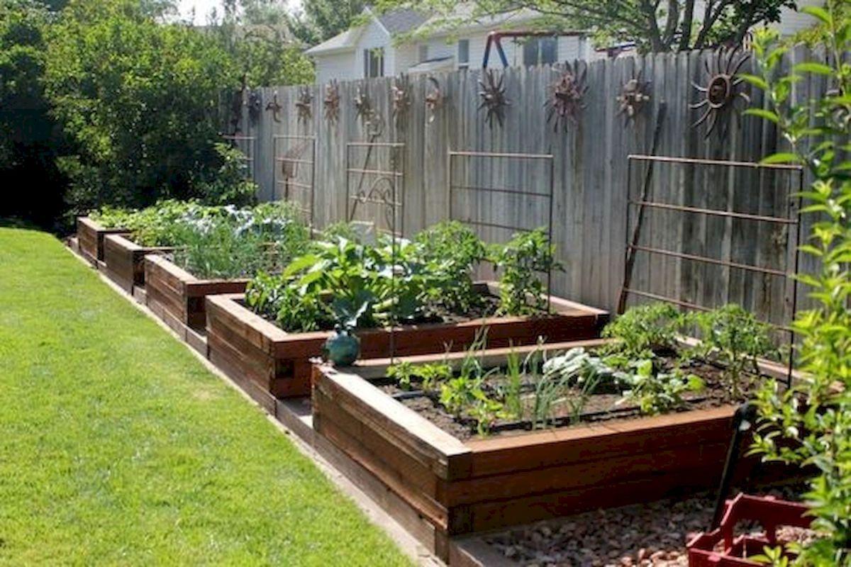 50 Inspiring Small Vegetable Garden Ideas (6)