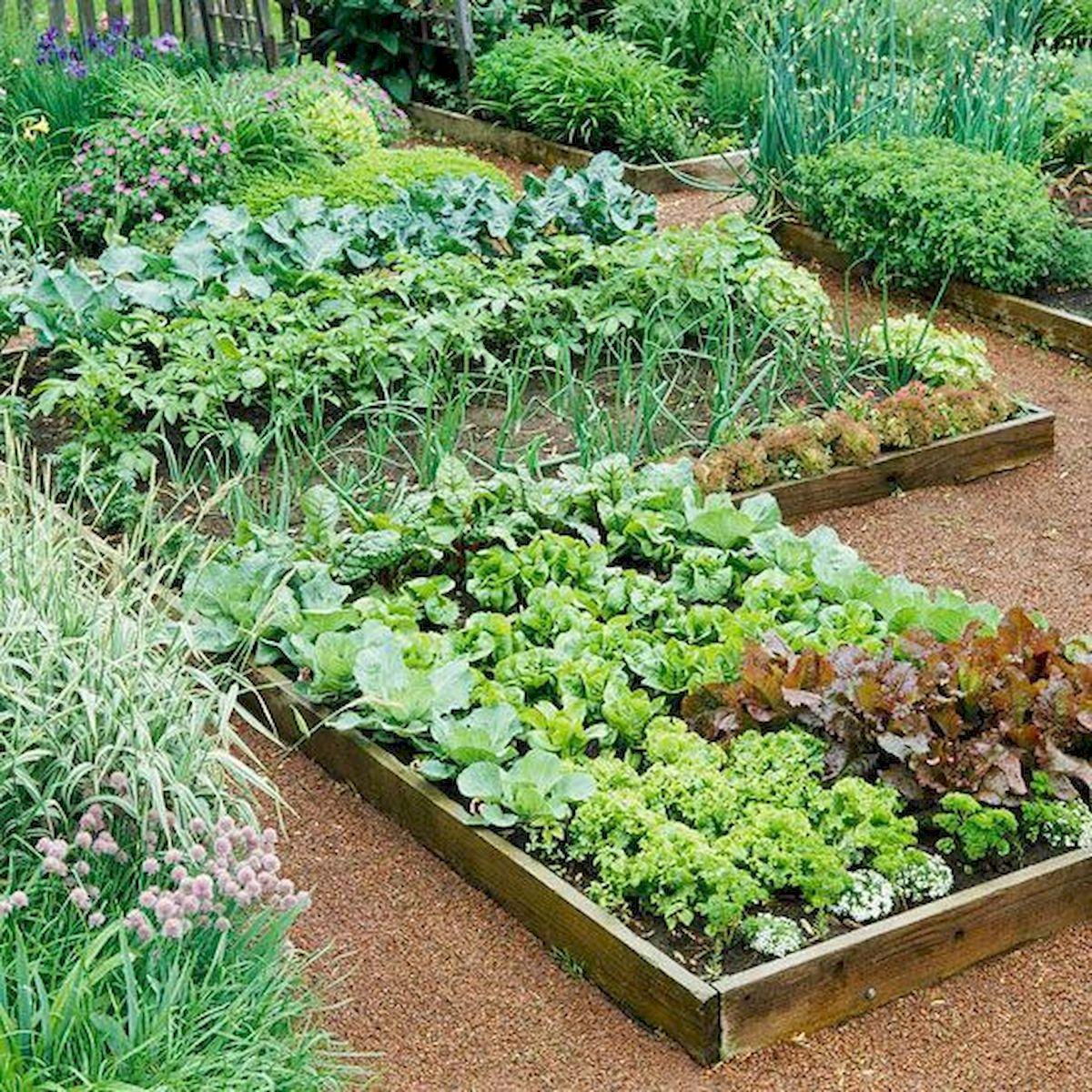 50 Inspiring Small Vegetable Garden Ideas (8)