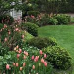55 Beautiful Flower Garden Design Ideas (1)