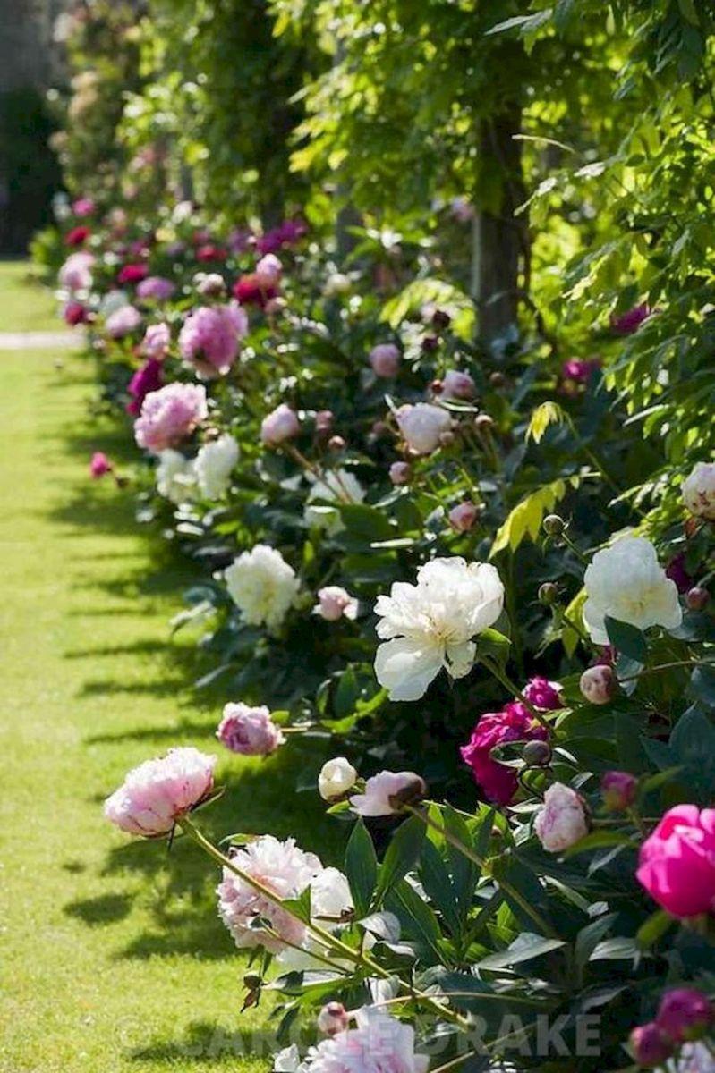 55 Beautiful Flower Garden Design Ideas (7)