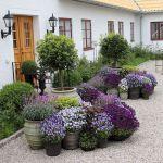 80 Best Patio Container Garden Design Ideas (25)