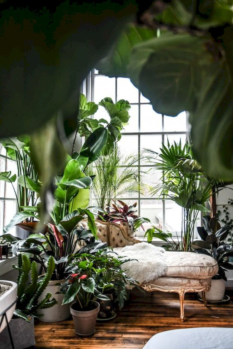 40 Awesome Indoor Garden Design Ideas That Look Beautiful (30)