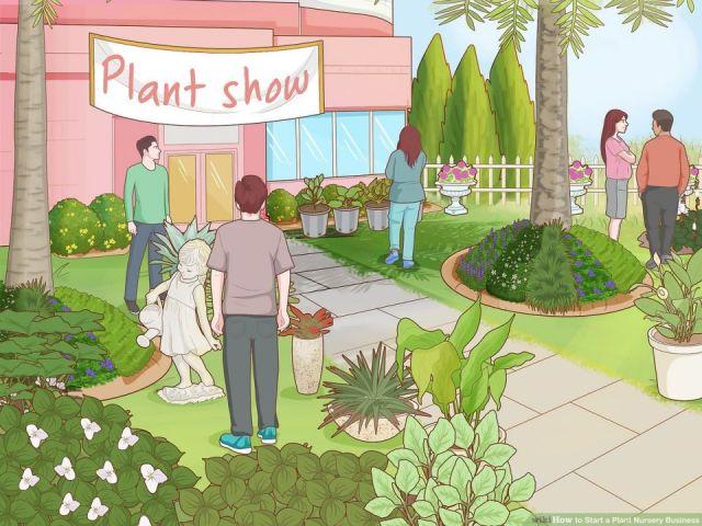 Best plant nursery business ideas