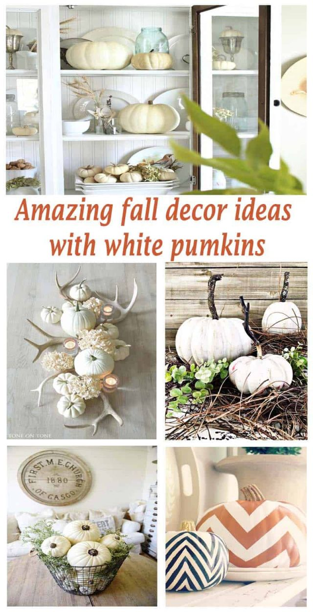 Adorable pumpkin decorations for fall