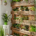 Adorable Indoor Plant Wall Ideas