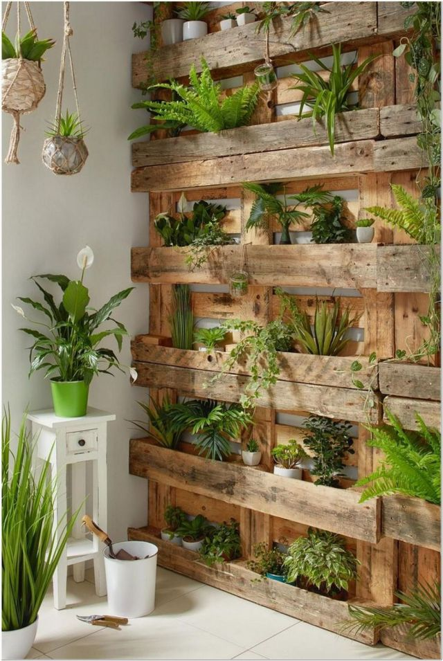 Nice indoor plant wall ideas