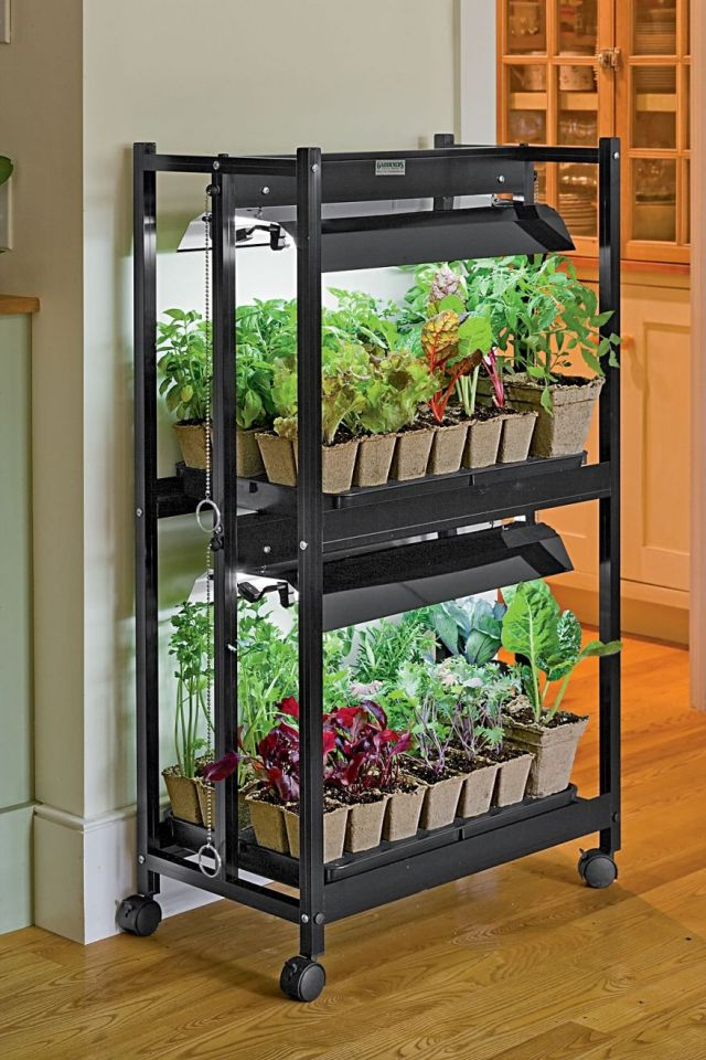 Adorable indoor vegetable garden ideas