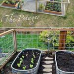 Awesome Backyard Garden Ideas Vegetables